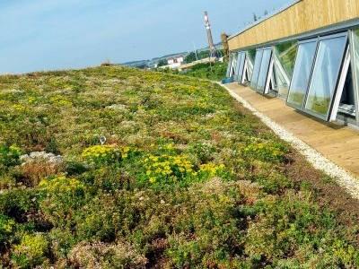 Česku přibývají budovy, které dokáží hospodařit s vodou